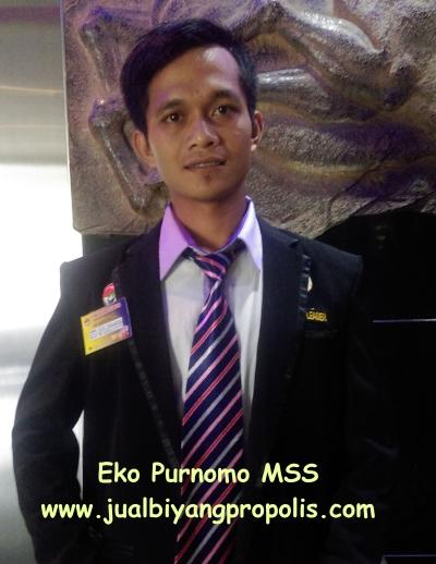 eko purnomo MSS