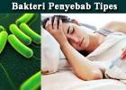 Cara Ampuh Sembuhkan Penyakit Thypus/Tipes Dengan Melia Propolis